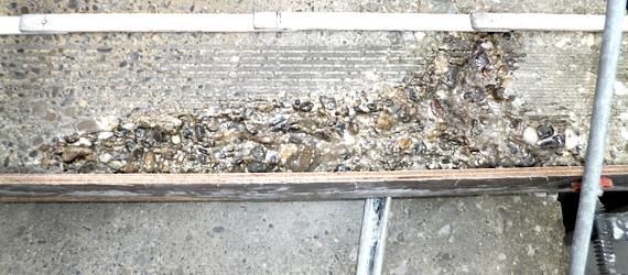 beschädigte Betonoberflächen sanieren Betonersatzsystemen Freiburg Kaiserstuhl Ortenau